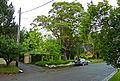 41 Arnold Street, Killara, New South Wales (2010-12-04) 01.jpg