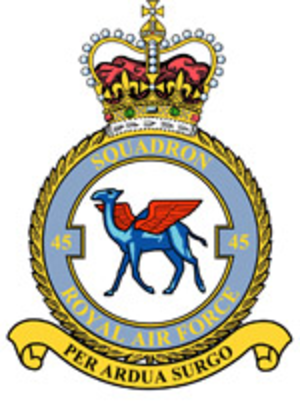 No. 45 Squadron RAF - 45 Squadron badge
