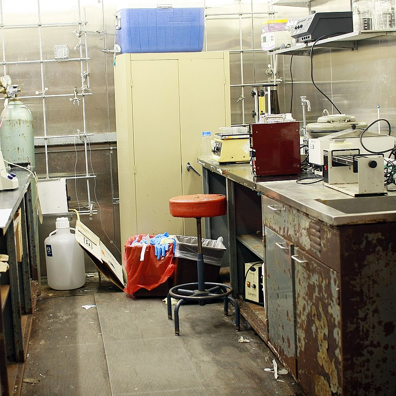 By Andra MIhali from New York City, United States - 4C cold room, CC BY-SA 2.0, https://commons.wikimedia.org/w/index.php?curid=20367484