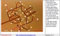 5-quantum knot.png