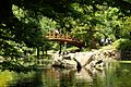 5957viki Park szczytnicki. Foto Barbara Maliszewska.jpg