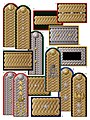 6. Civil braided shoulder boards (1894-1910).jpg