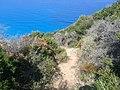 67.Agios Nikitas -In drum catre plaja Mylos - panoramio.jpg