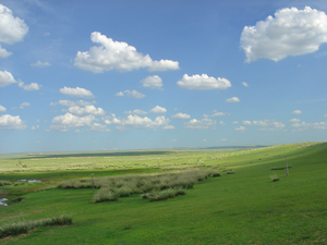 Wallpaper (computing) - Computer wallpaper - grassland of inner Mongolia