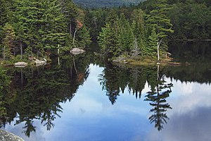 Green Mountain National Forest - Image: A310, Little Rock Pond, Green Mountain National Forest, Vermont, USA, 2009