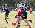 AFL Bond University Bullsharks (17526444423).jpg