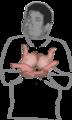 ASL BentB@BackFinger-PalmBack-BentB@CenterChesthigh-PalmBack OpenC@Ulnar-PalmUp-OpenC@CenterChesthigh-PalmUp.png