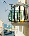 A Dog S Life In Vieste (148631425).jpeg