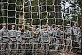 A Green Beret assigned to the 7th Special Forces Group (Airborne) demonstrates how to safely climb a cargo net obstacle.jpg