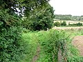 A dog leg in the Elham Valley Way - geograph.org.uk - 956128.jpg