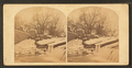 A mill-dam, Frankford Creek, (Pa.) Scornful of a check, it leaps the mill-dam and wantons in the pelby gulf below, from Robert N. Dennis collection of stereoscopic views.png