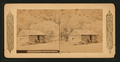 A sheep ranchman's house in California, from Robert N. Dennis collection of stereoscopic views.png