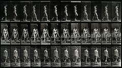 A woman bearing two buckets. Photogravure after Eadweard Muy Wellcome V0048626.jpg