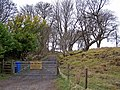Access road to cottages - geograph.org.uk - 1210497.jpg