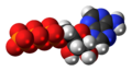 Adenosine-triphosphate-anion-3D-spacefill.png