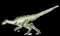 Agilisaurus2 transparent.png