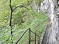 Albtraufgänger, Hossinger Leiter 945 m ü. NN - panoramio (1).jpg