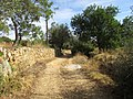 Albufeira, Country lane with dry stone wall in Enxertia (4).JPG