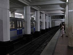 Alexandrovsky Sad (Александровский сад) (4887460897)