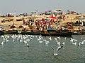 Allahabad, Triveni Sangam 27 (39310070552).jpg