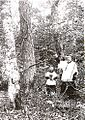 Allardville 1932.jpg