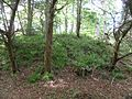 Alloway Motte and Court Hill, Doonholm, Ayr, South Ayrshire, Scotland.jpg