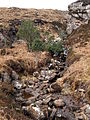 Allt Bealach - geograph.org.uk - 752340.jpg