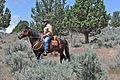 American Competitive Trail Horse Ride (7336786274).jpg