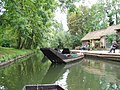 Amiens barque des Hortillonnages 1.jpg