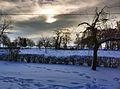 Anglesqueville en hiver.jpg