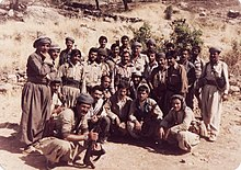 Group of about 20 Iraqi soldiers, posing with guns