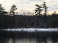 Anstruther Lake with just a little snow...Apsley27, Ontario.png