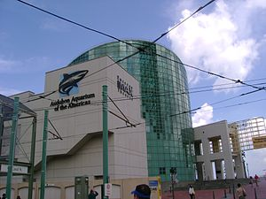 Aquarium of the Americas - The view of the aquarium building from Canal Street after Hurricane Katrina