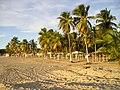 Arecibo beach.jpg