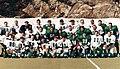 Arendal Wildcats 1996.jpg