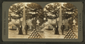 Arlington National Cemetery, from Robert N. Dennis collection of stereoscopic views.png