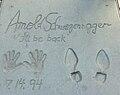ArnoldSchwarzeneggerGraumanHandFootprintsOct10.jpg