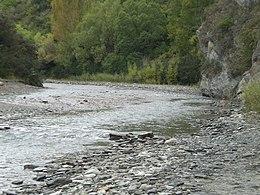 rive d'une rivière, en fond une forêt.