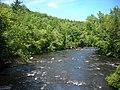 Ashuelot River 072207 271.jpg