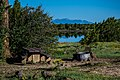 Ashurst Lake (36911069134).jpg