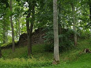 Burtnieki Castle - Image: Asti ordulinnuse müürid 08