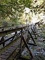Au-bridge-Graf Salm Steg-07ESD.jpg