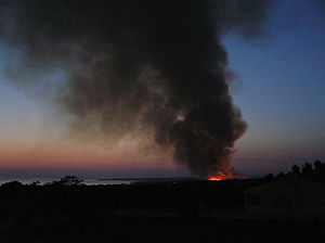 On of the many forest fires in Croatia. Photo ...