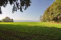 Ausblick im Landschaftsschutzgebiet Gehrdener Berg IMG 5212.jpg