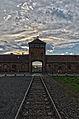 Auschwitz II (Birkenau), april 2014, photo 1.jpg
