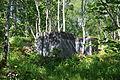 Austrått Fort - Teile der Verteidigungsanlagen (5930642921).jpg