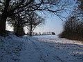 Auzeville-Tolosane - Chemin de Bosc Blanc - 20120209 (1).jpg