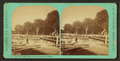 B.L. Hart's orange grove, from wharf, Palatka, from Robert N. Dennis collection of stereoscopic views.png