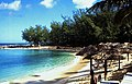 Bahamas 1988 (264) Paradise Island Cove (24058252116).jpg
