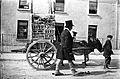 Ballyshannon Show, Man, Boy & Donkey (21071139455).jpg